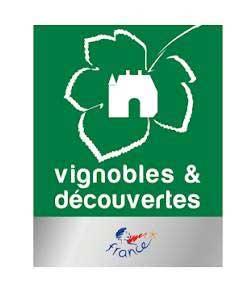 vignoble-decouvertes